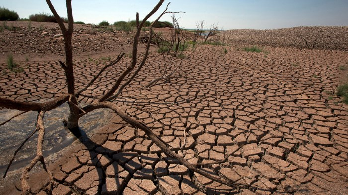 The East Africa drought is the worst one in that area in 60 years.