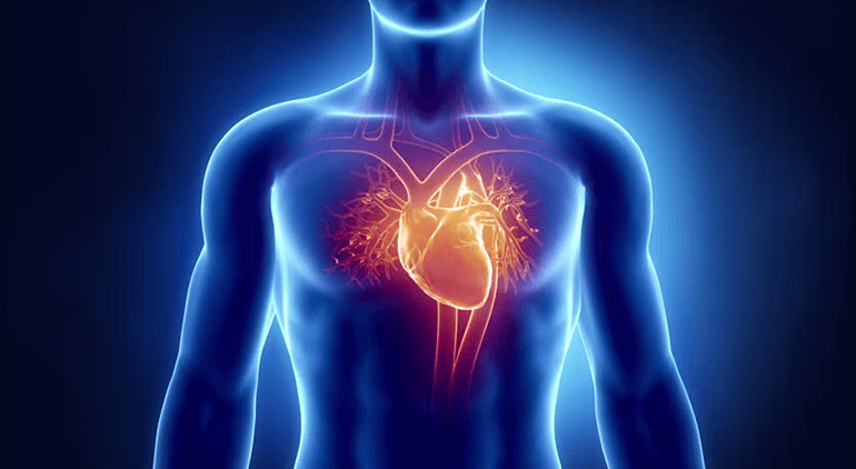 Almost seventy thousand people die each year owing to complications from Heart Disease