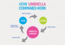 Top 5 Umbrella Companies
